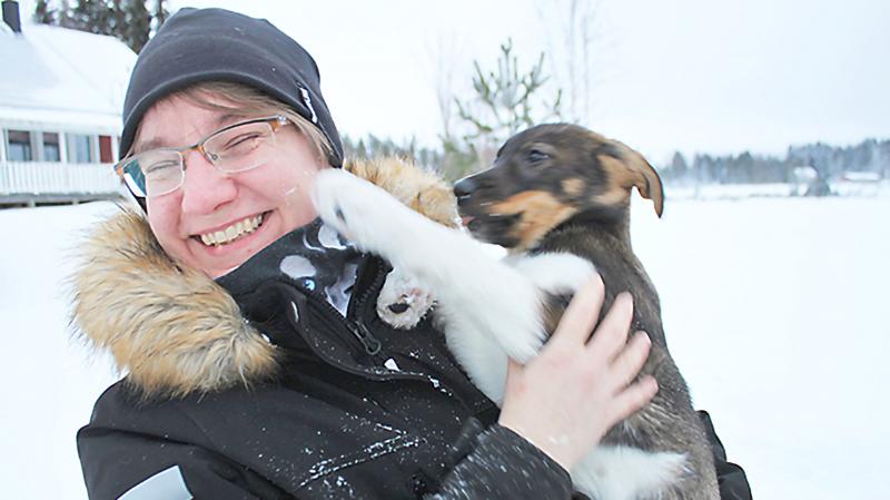 Alaskanhuskyt nauttivat juoksemisesta